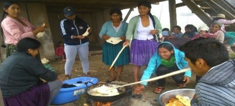 Strengthening food sovereignty of indigenous peasant families with a gender focus in the Municipality of Ckochas
