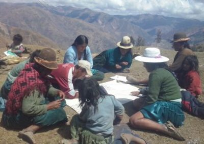 Organizational and productive strengthening of indigenous women for food security in Pocoata