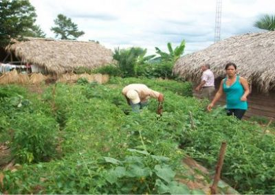 Guarantee food security for 100 families in Jarabacoa, based on the leadership of women