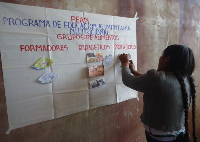 Bolstering and consolidating the commercial activities of production and economic associations of women and mixed sexes for food sovereignty and the economic empowerment of women in districts 6 and 7 of the Sucre municipality, Phase II.